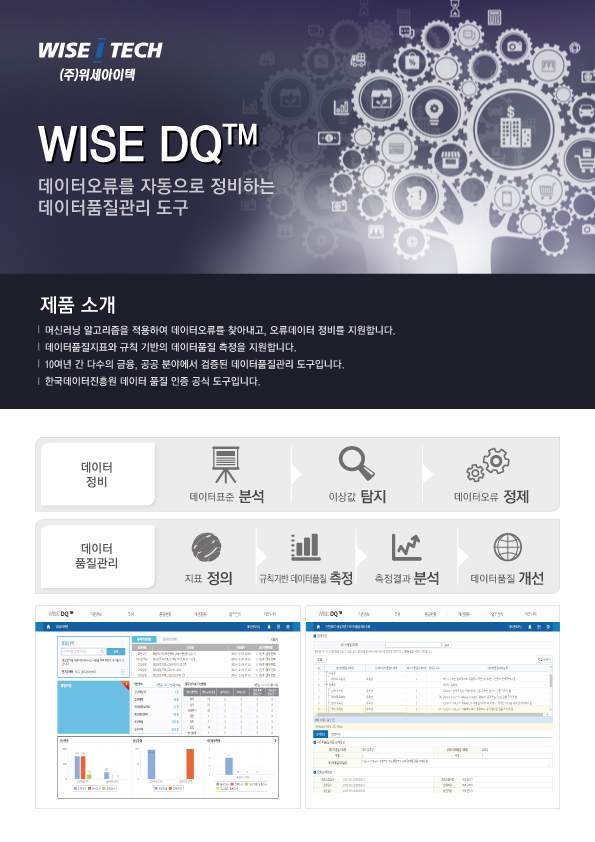 WISE DQ Brochure Front