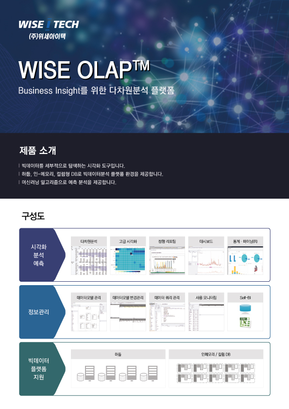 WISE OLAP Brochure Front
